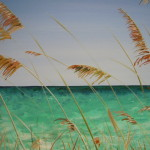 Cape May Shore