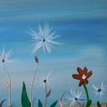 White Star Flowers